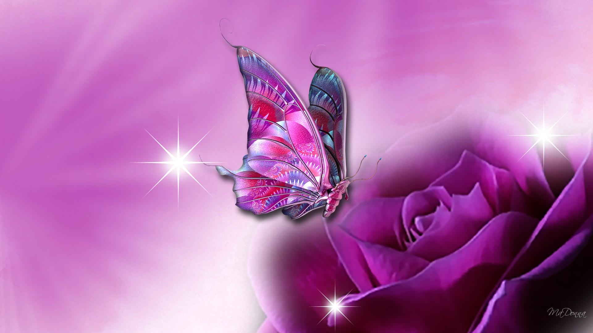 Beautiful Butterfly Wallpapers HD Pictures | One HD Wallpaper Pictures ...