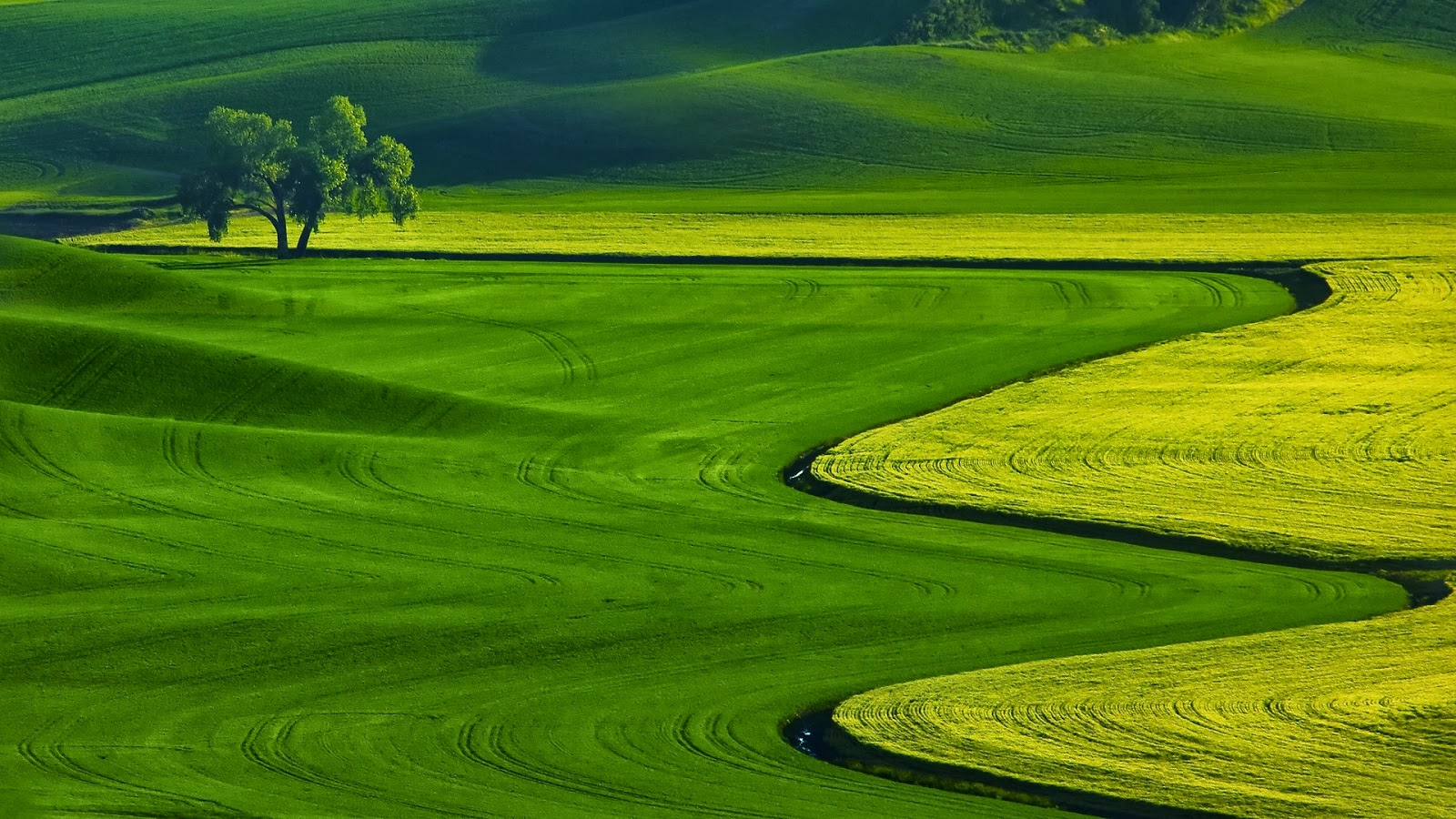 ... Nature Wallpapers Free Downloads Full HD High Res Nature Wallpapers