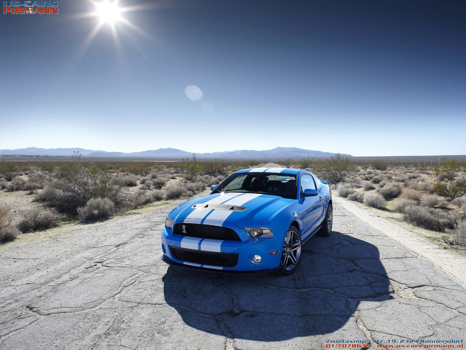 2013 Ford Shelby GT500 Cobra 2 Wallpaper | HD Car Wallpapers HTML code