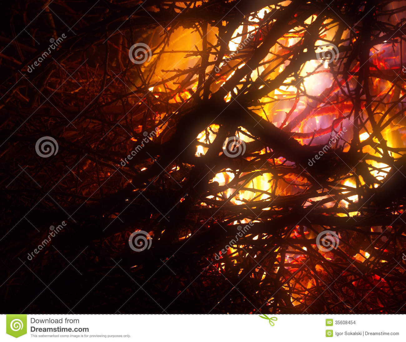 Abstract flame background: fire of burning brushwood (branches ...