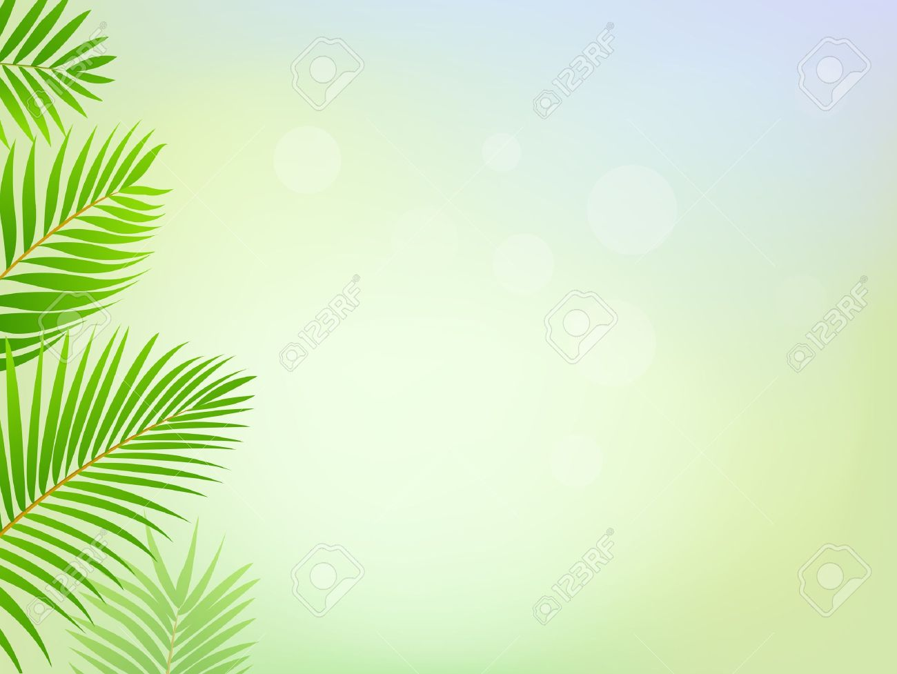 palm tree frame background (green clipart