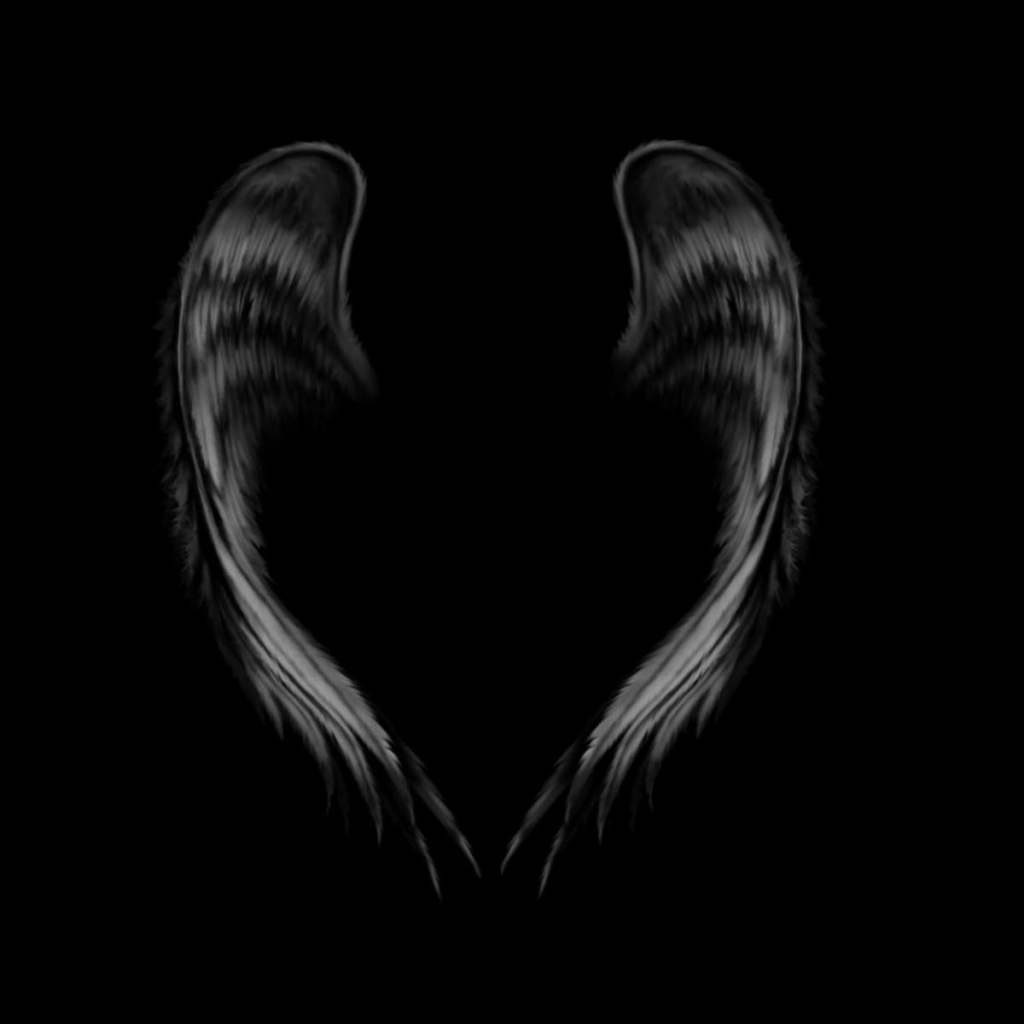Black Angel Wing Backgrounds Black Angel Wings Design Angel