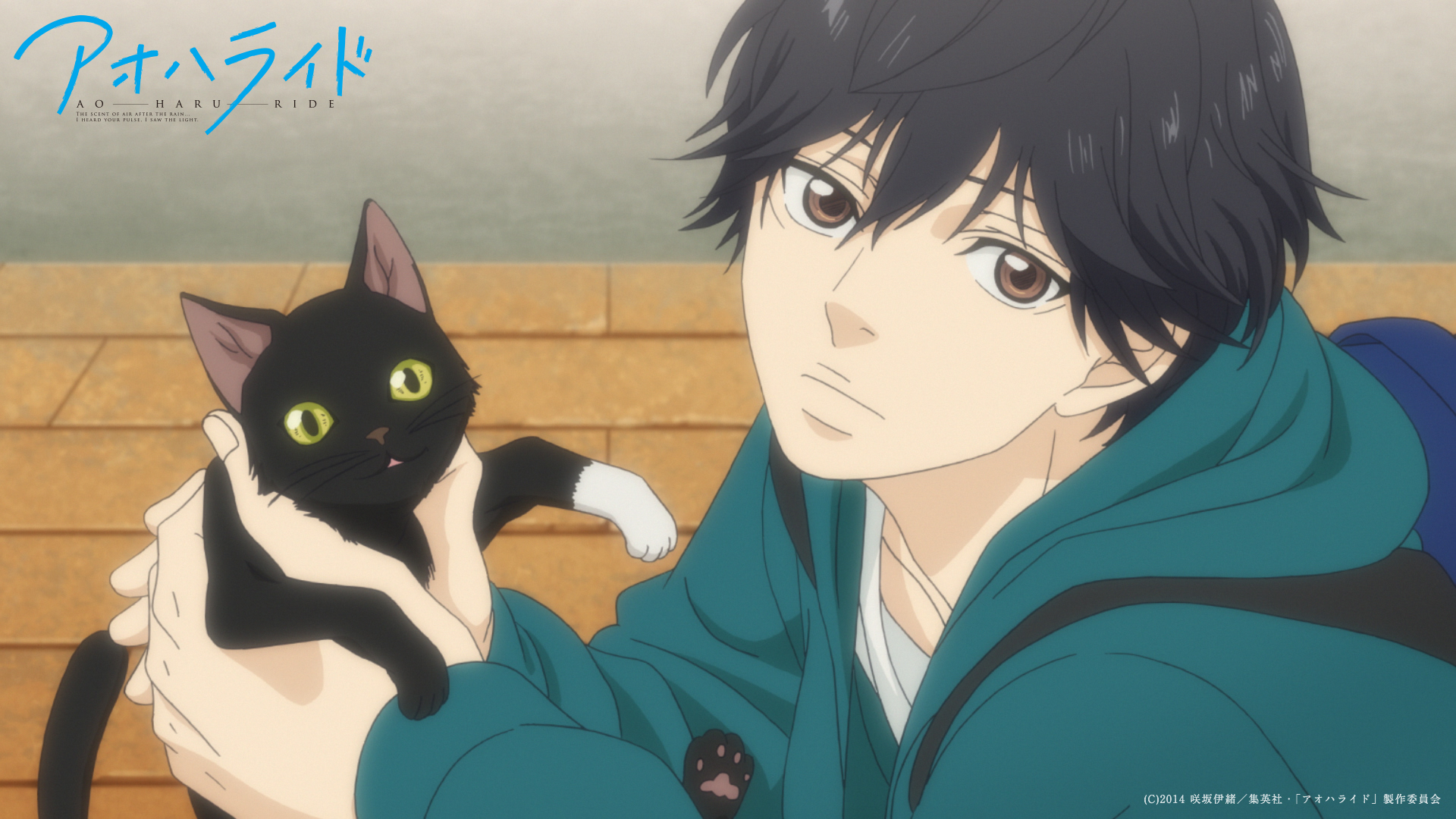 Anime - Ao Haru Ride Wallpaper