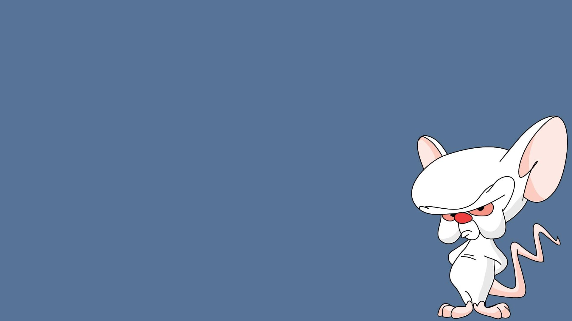 Pinky And The Brain Computer Wallpapers, Desktop Backgrounds ...
