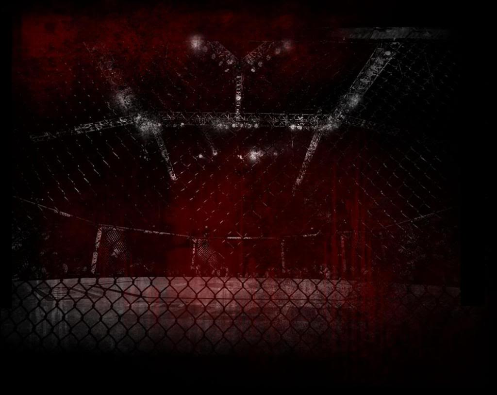Octagon Cage Wallpaper octagon game download for windows