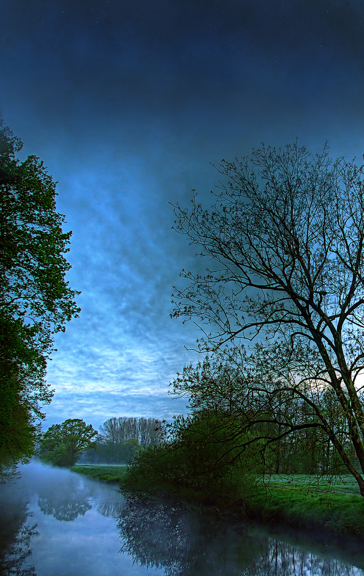Tree-lined river at sunset under blue sky and clouds portrait photo