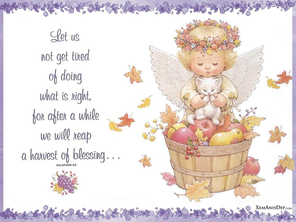 Angel Pictures Cute little angel pictures | Xemanhdep Photos Awesome ...