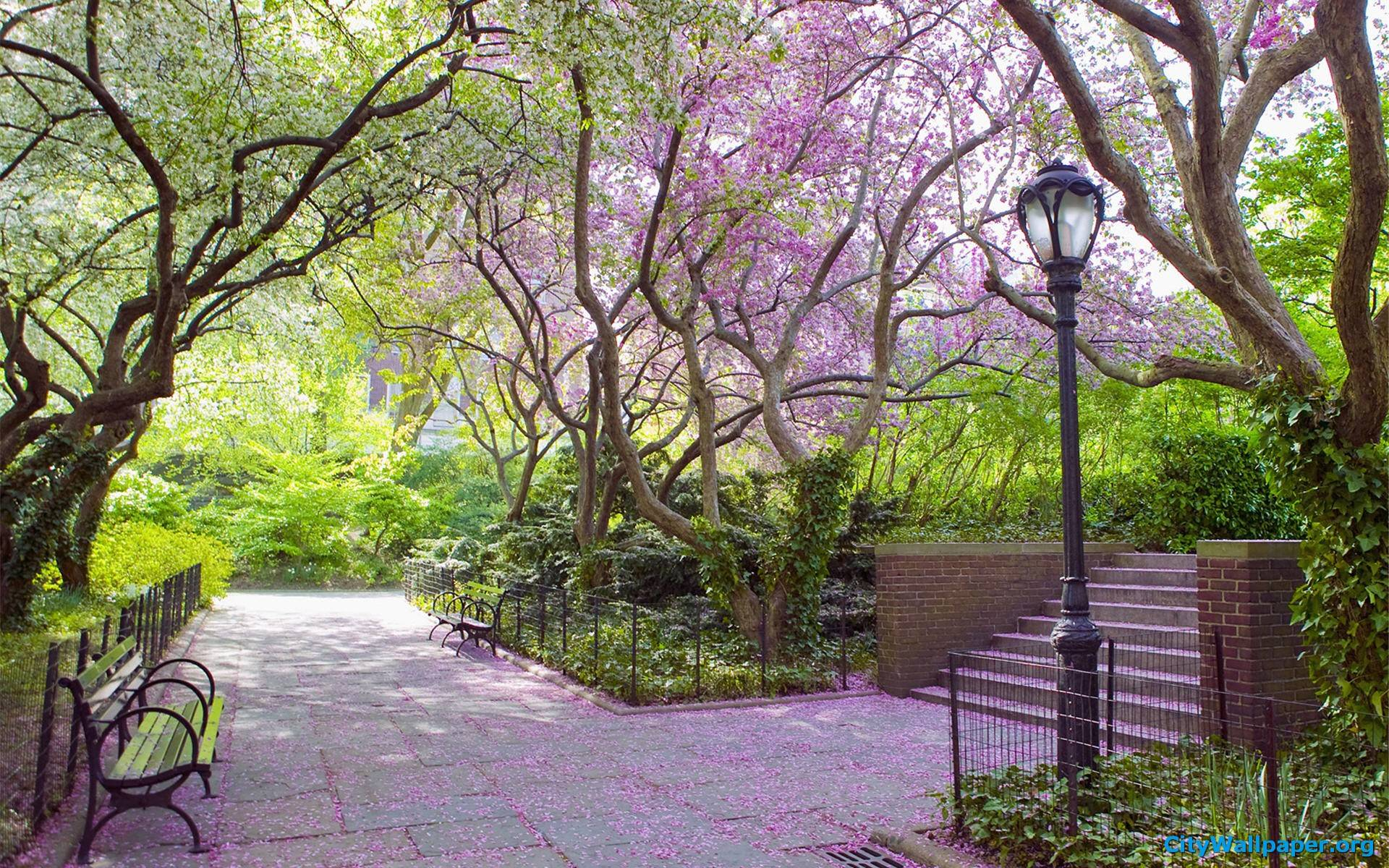Central Park Wallpapers - Full HD wallpaper search - page 2