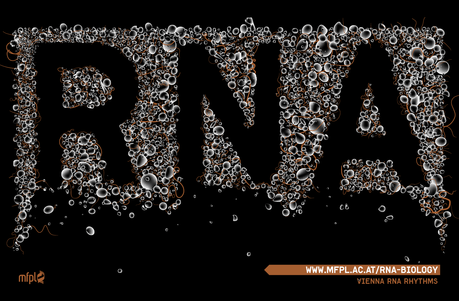 ... rna biology wallpaper png 1600 1050 rna biology wallpaper png see more