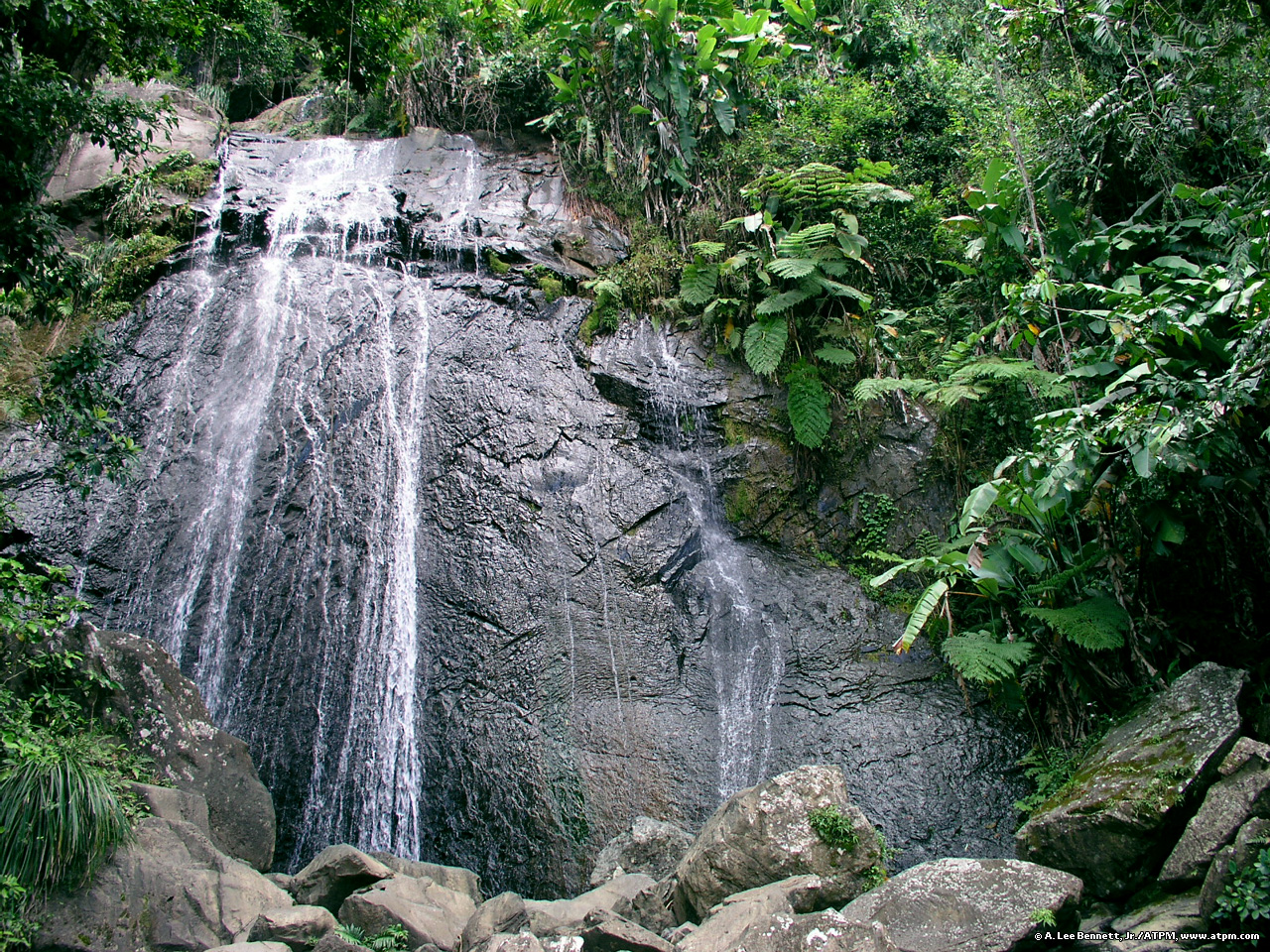 Puerto Rico images El Yunque Waterfall HD wallpaper and background ...