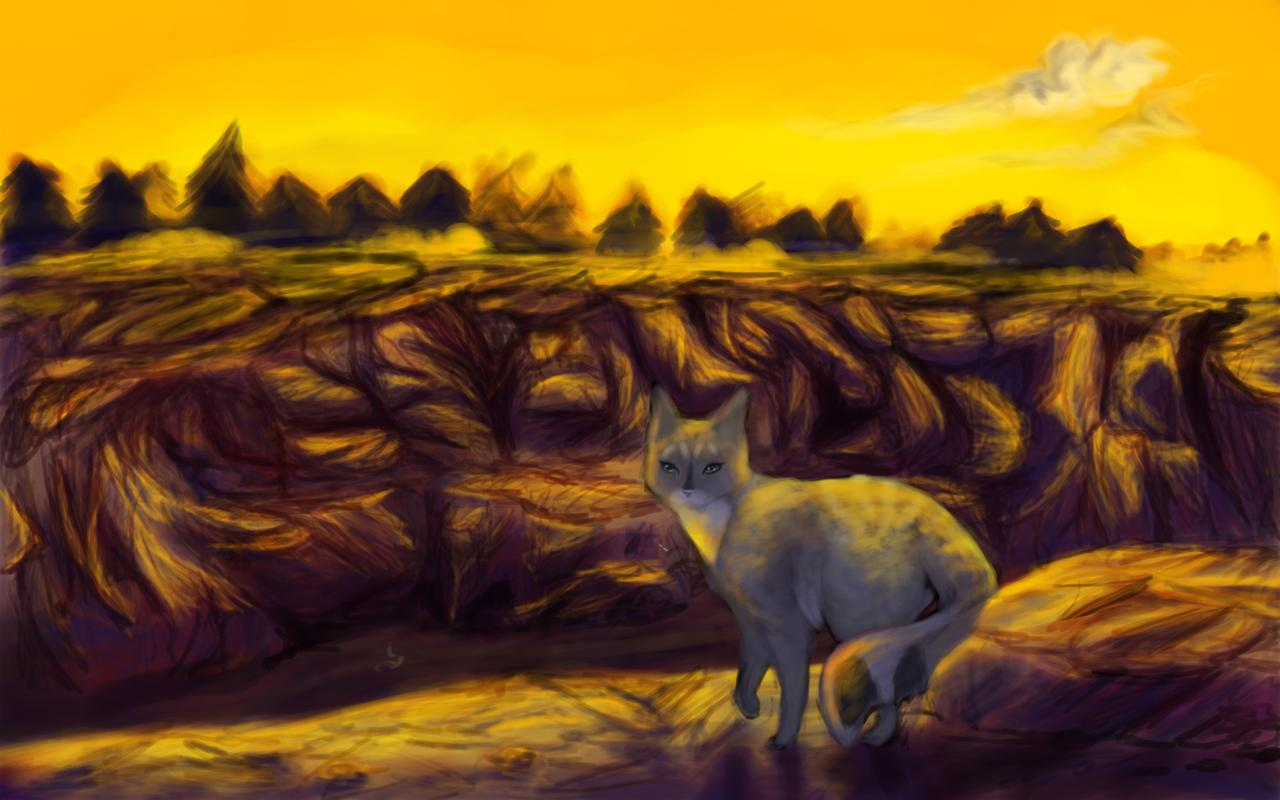 Welcome to Thunderclan by iamblossom on DeviantArt