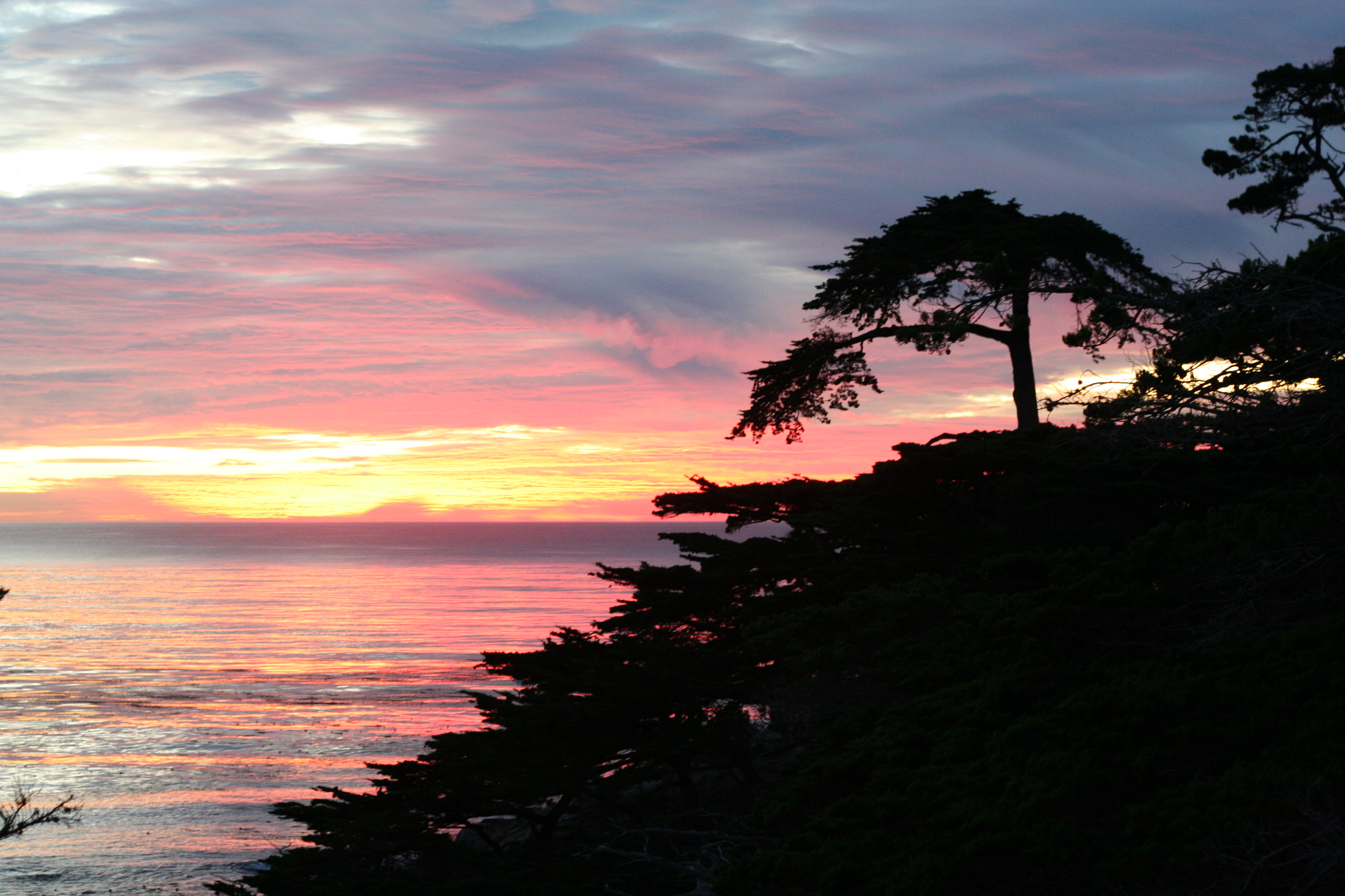 ... at The Lone Cypress point lookout, Pebble Beach, Northern California