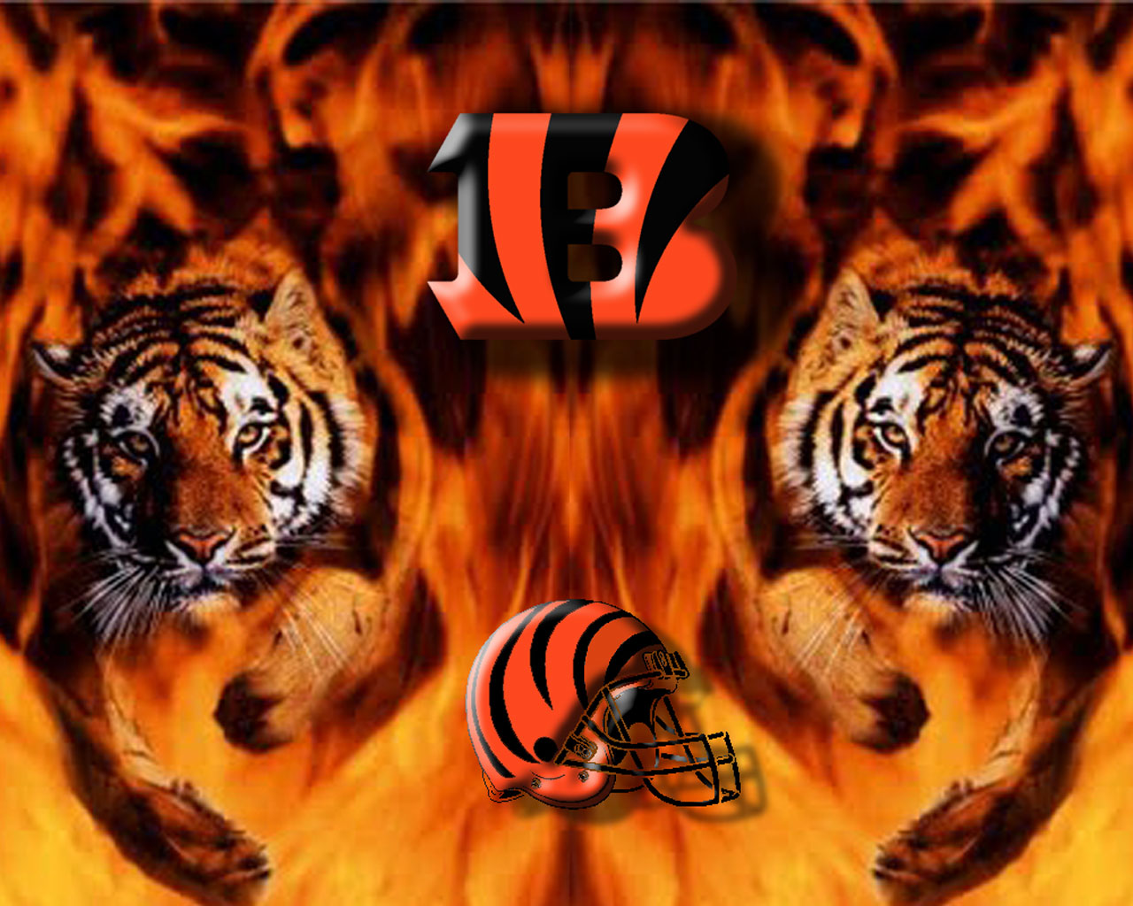 Pics Photos - Cincinnati Bengals Wallpaper