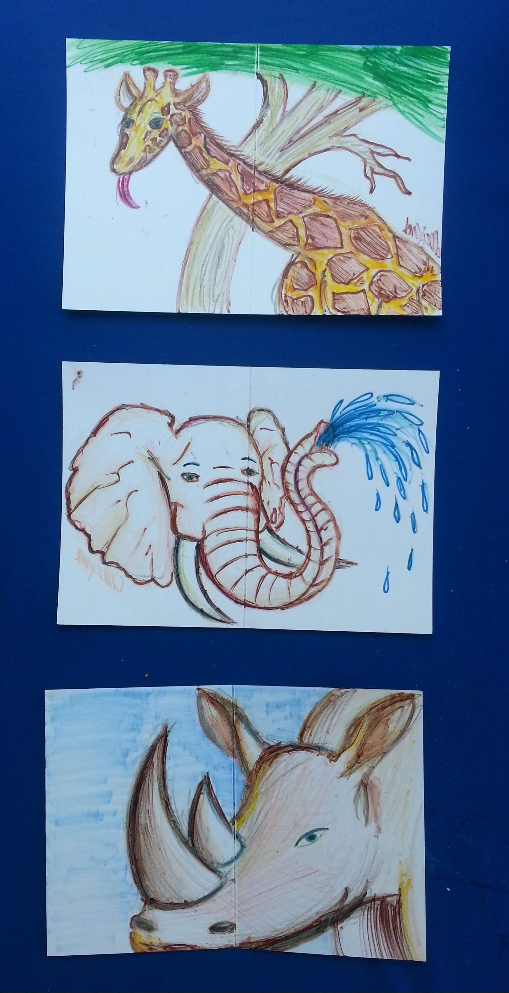 National Zookeeper Week Thank You Cards|Batch #1 by ...