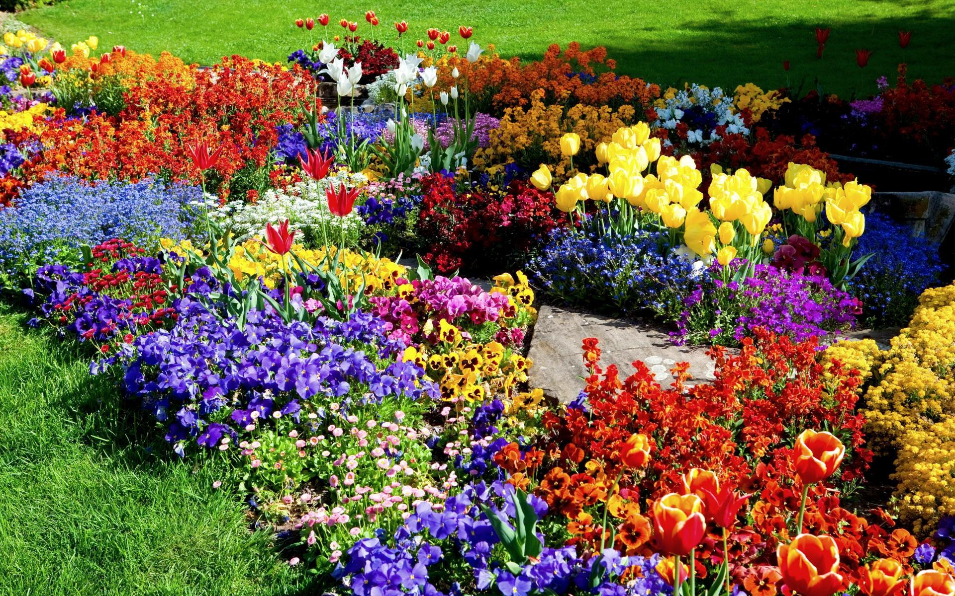 awesome flower garden wallpaper Road