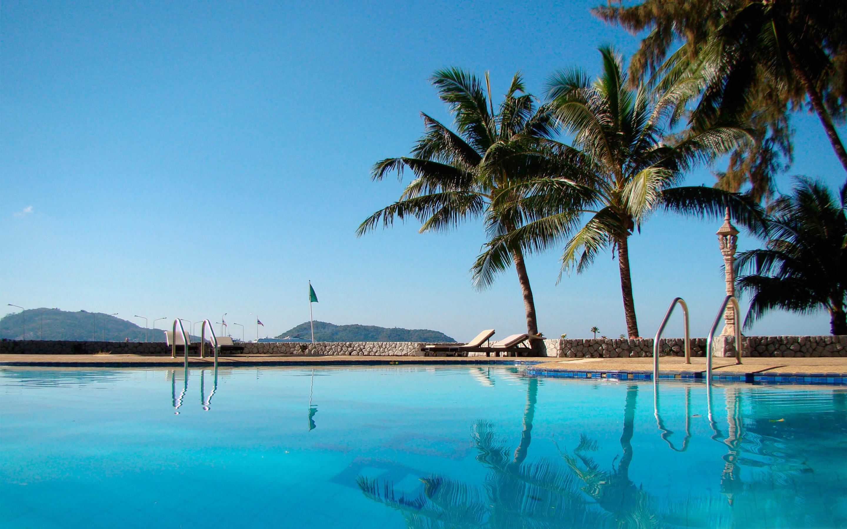 Pool and palm trees wallpapers and images - wallpapers, pictures ...