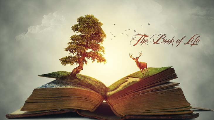 1920x1080 The book of life mind blowing nature wallpapers | HD Wallpapers Rocks